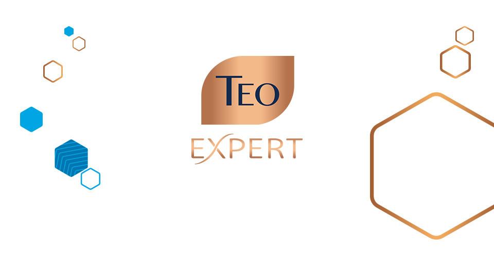 Teo og meta - ТEO Expert